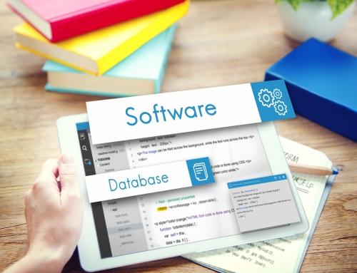 Softwareanbieter – was sie für Sie leisten sollten